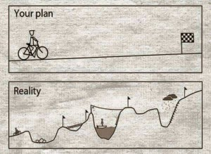 Plan and reality