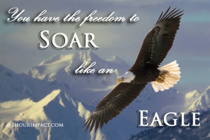 soaring eagle with words